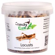 Locusts (35g; freeze dried)