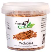 Mealworms (55g)