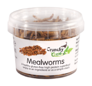 Mealworms (20g)