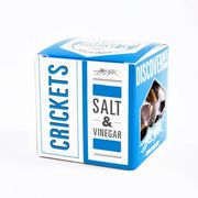 Salt & Vinegar - Flavored Crickets (14g) - JIMINI'S - 20% DISCOUNT for registered customers!